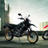 Honda CCRF250M