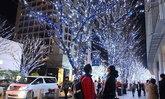 :: คริสต์มาสที่แดนปลาดิบ :: 6 จุดชมไฟคริสต์มาสระยิบระยับแห่งกรุงโตเกียว