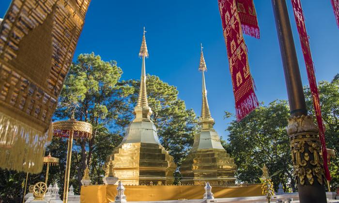 มูลนิธิแม่ฟ้าหลวงฯ เปิดรับสมัครนักศึกษาฝึกงานชาวไทยและต่างชาติ เรียนรู้หลักการพัฒนาอย่างยั่งยืน