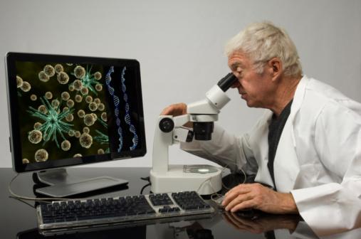 กระบวนการตรวจพิสูจน์ DNA
