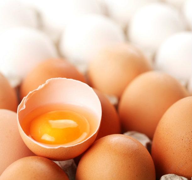 กินไข่ทุกวัน อันตราย หรือปลอดภัย