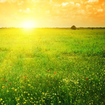 10 ประโยชน์ ของการตื่นเช้า