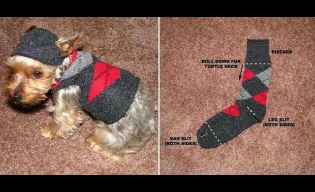 DIY เสื้้อสเวตเตอร์ Hoody น้องหมา