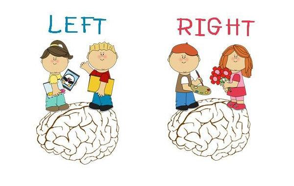 แบบทดสอบ : สมองคุณเด่นซีก ซ้าย หรือ ขวา ?