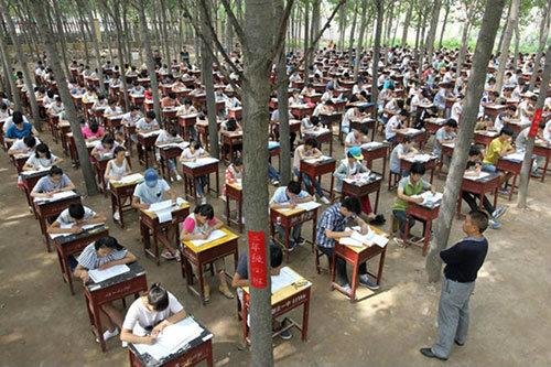 ธรรมชาติบำบัด! โรงเรียนในจีนจัดสอบกลางป่าลดความเครียดให้นักเรียน