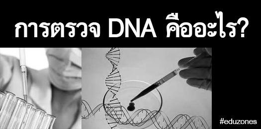 การตรวจ DNA คืออะไร?