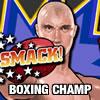 Boxing Champ