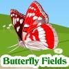 เกมส์ฝึกสมอง Butterfly Fields