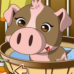 เกมส์เลี้ยงสัตว์ Pet Piggy