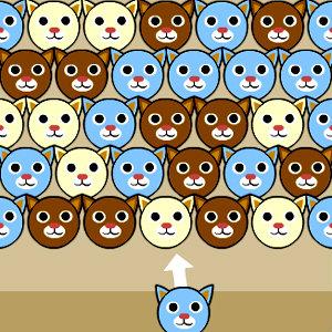 เกมส์ยิงลูกบอล เกมส์ยิงน้องแมวเหมียว