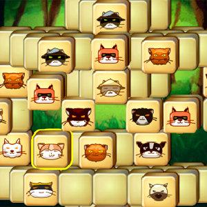 เกมส์จับคู่แมว