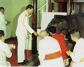 พระราชพิธีสมโภชขึ้นระวางช้างสำคัญ