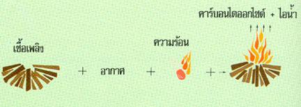 การเผาไหม้เชื้อเพลิงทำให้เกิดมลพิษ