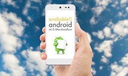 i-mobile ปล่อย Update Android 6.0 Marshmallow ให้กับ iq II แล้ววันนี้