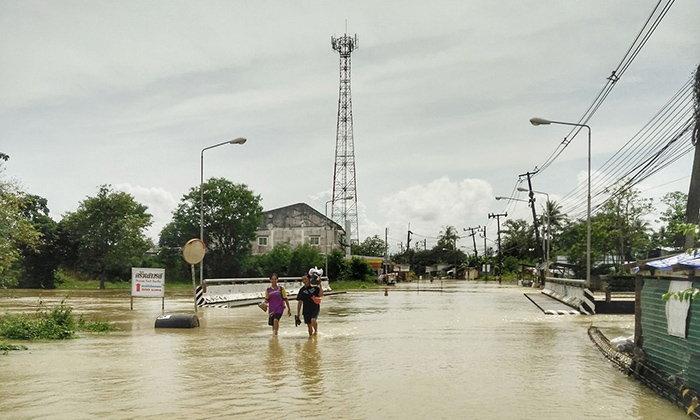 ดีแทคออกมาตรการเยี่ยวยาพื้นที่ประสบภัยน้ำท่วม 8 จังหวัด 36 อำเภอ
