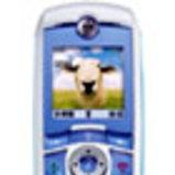Motorola C381