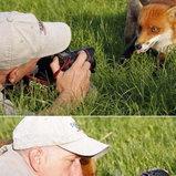รวมภาพน่ารักของช่างภาพธรรมชาติ