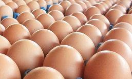 ไข่...ให้สุขภาพ