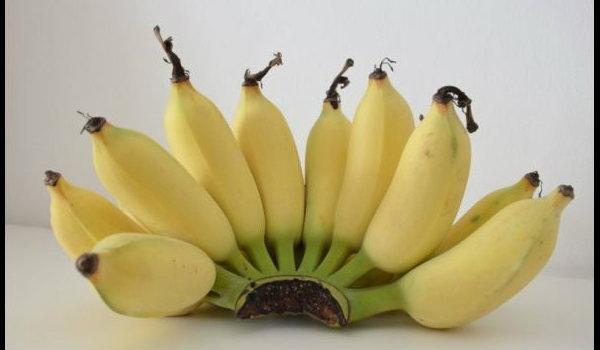 ประโยชน์ กล้วยน้ำว้า