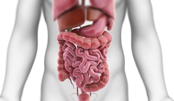 โทษของไขมันเกาะในร่างกาย+สูตรลดหน้าท้องล้างไส้