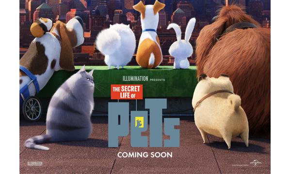 พบการผจญภัยในมหานครนิวยอร์กของสัตว์เลี้ยงแสนซนใน The Secret Life Of Petsเรื่องลับแก๊งขนฟู สิงหาคมนี้