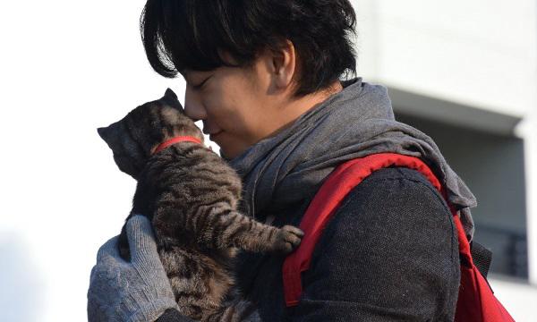 ทาสแมวห้ามพลาด คนรักเจ้าเหมียวต้องเลิฟ If Cats Disappeared from the World