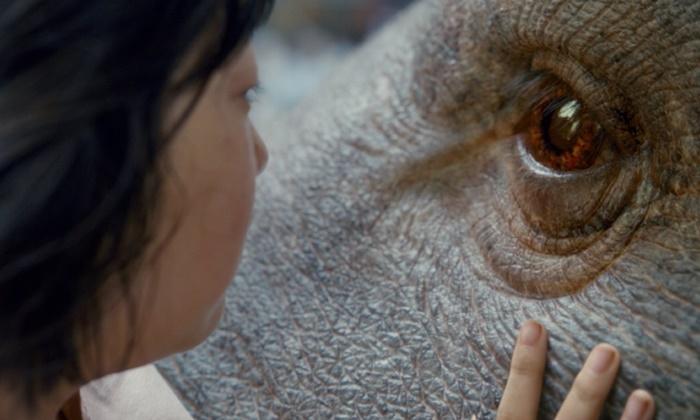 Okja ทำไมหมูตัวยักษ์..ต้องอยู่บนโลกที่เข้าใจยากใบนี้