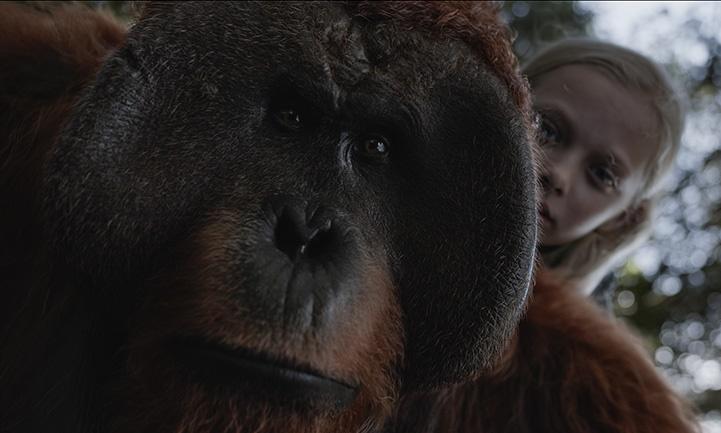 ดูแล้วบอกต่อ War For The Planet Of The Apes เมื่อเรามองในมุมของมนุษย์