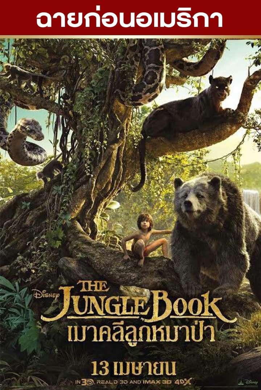 เมาคลีลูกหมาป่า The Jungle Book