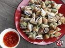 หอยชักตีน