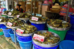 เที่ยวแหล่งอาหารทะเลขึ้นชื่อสมุทรสาคร