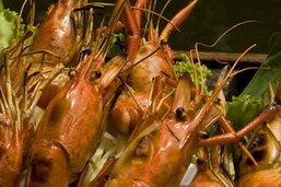 ชวนลิ้มรสเมนูเด็ด เมืองสิงห์บุรี