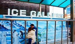 วอร์มร่างกายก่อนรับหน้าหนาวสุดขั้วในเกาหลีกันที่ ICE GALLARY!