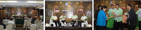 งานมะขามหวาน นครบาลเพชรบูรณ์ ปี 2554