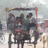 ประเืทศอินเดีย