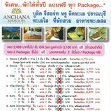 Amazing Thailand Grand Sale 2011