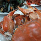เทศกาลอาหารทะเลจังหวัดสมุทรสาคร ครั้งที่ 11