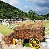 the scenery vintage farm จ.ราชบุรี