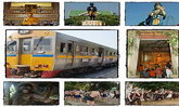 ปู๊น ปู๊น...นั่งรถไฟเที่ยวเมือง 2 สมุทร ในวันหยุดของสัปดาห์