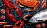 เทศกาลกินกุ้งกินปลาอาหารบางปลาม้ารสเด็ด ครั้งที่ 4
