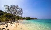 """อุทยานใต้ทะเล """"เกาะขาม"""" สัตหีบ KOHKHAM"""