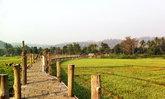 """สะพานไม้ """"ซูตองเป้"""" สะพานไม้ที่ดังที่สุด ในแม่ฮ่องสอน"""