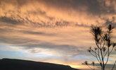 """""""ภูน้ำฟ้า"""" สูดไอหมอกยามเช้า ชมแสงทองยามเย็น @ ภูกระดึง"""