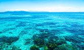 แนวปะการังยักษ์ Great Barrier Reef รอดแล้ว ยูเนสโก้ประกาศถอนจากกลุ่มสถานที่ที่ตกอยู่ในอันตราย!!
