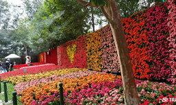 ท่องเที่ยวสไตล์พิศาล : มหกรรมไม้ดอกอาเซียน ประชันโฉมเชียงรายดอกไม้งามครั้งที่ 13