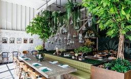 หนีความวุ่นวายมาทานข้าวในร้านสวยสุดร่มรื่นที่ร้าน GISMO