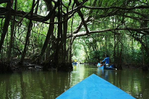 """""""ที่เที่ยวหน้าฝน"""" สุดฮอต 4 ภาค ของไทยที่คุณต้องไป"""