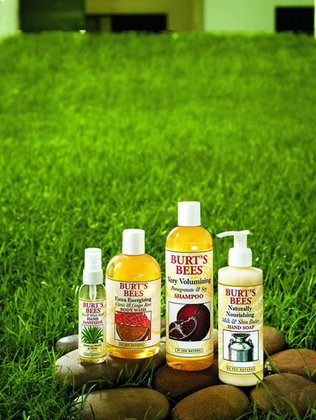 Burt's Bees Body Wash & Body Care
