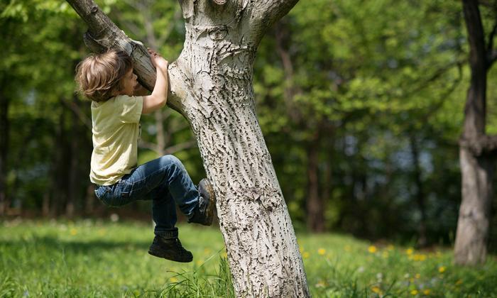 ลูกอยู่ไม่นิ่ง ชอบปีนป่ายทำอย่างไรดี วิธีทำให้ลูกสงบนิ่ง ไม่ดื้อไม่ซนต้องทำยังไง