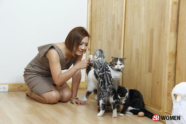 ทูนหัวของบ่าว จากครีเอทีฟมาเป็นทาสแมวสุดโด่งดัง